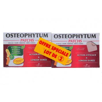 OSTEOPHYTUM PATCHS 3 CHENES x 28