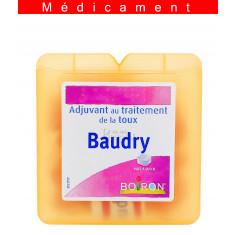 BAUDRY, pâte à sucer – 70G